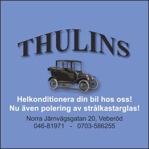 Thulins Bilvård