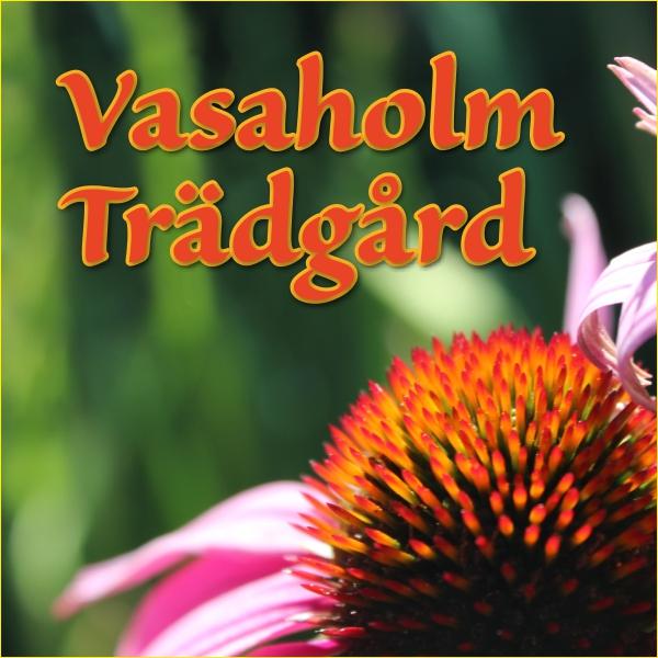 Vasaholm Trädgård